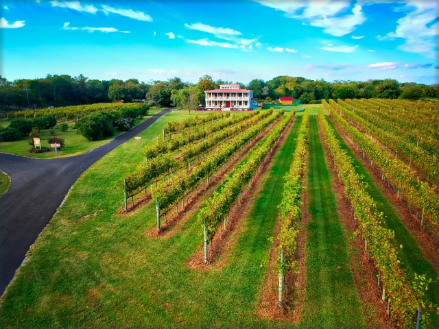 Willow Creek Winery and Farm is 50-Acres of scenic beauty in the heart of the Cape May Peninsula Wine Region.