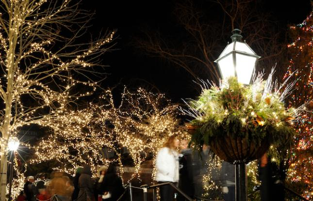 Christmas Lights in Palmer Square in Princeton, New Jersey