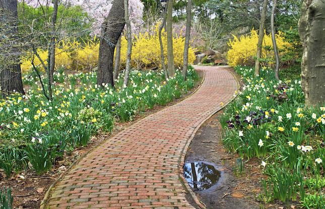 Spring Path at Sayen House in New Jersey
