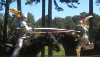 Annual Lakewood Lions Renaissance Faire
