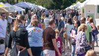 Shady Grove Arts & Crafts Festival