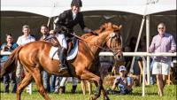 Mars Essex Horse Trials & Family Weekend
