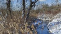 Life Along the Wallkill River