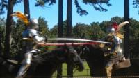 Lakewood Lions Charity Renaissance Faire