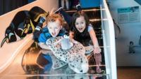 Wild Kratts: Creature Power Exhibit
