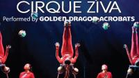 Cirque Ziva performed by the Golden Dragon Acrobats
