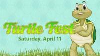 Turtle Fest!