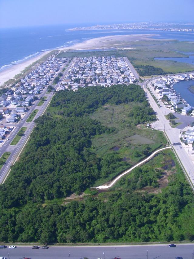 Aerial View Of Stone Harbor Bird Sanctuary