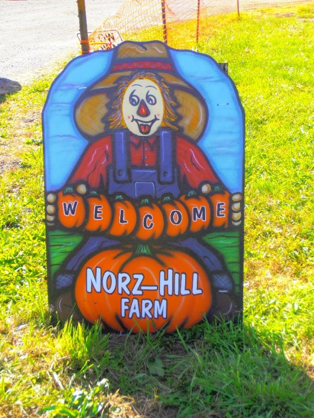 Welcome to Norz Hill Farm