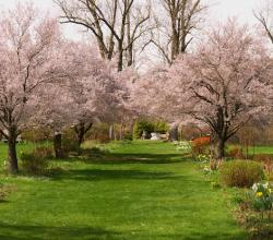 New Jersey Botanical Garden at Skylands